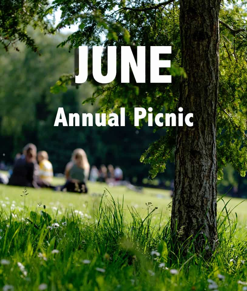AAH Picnic in June