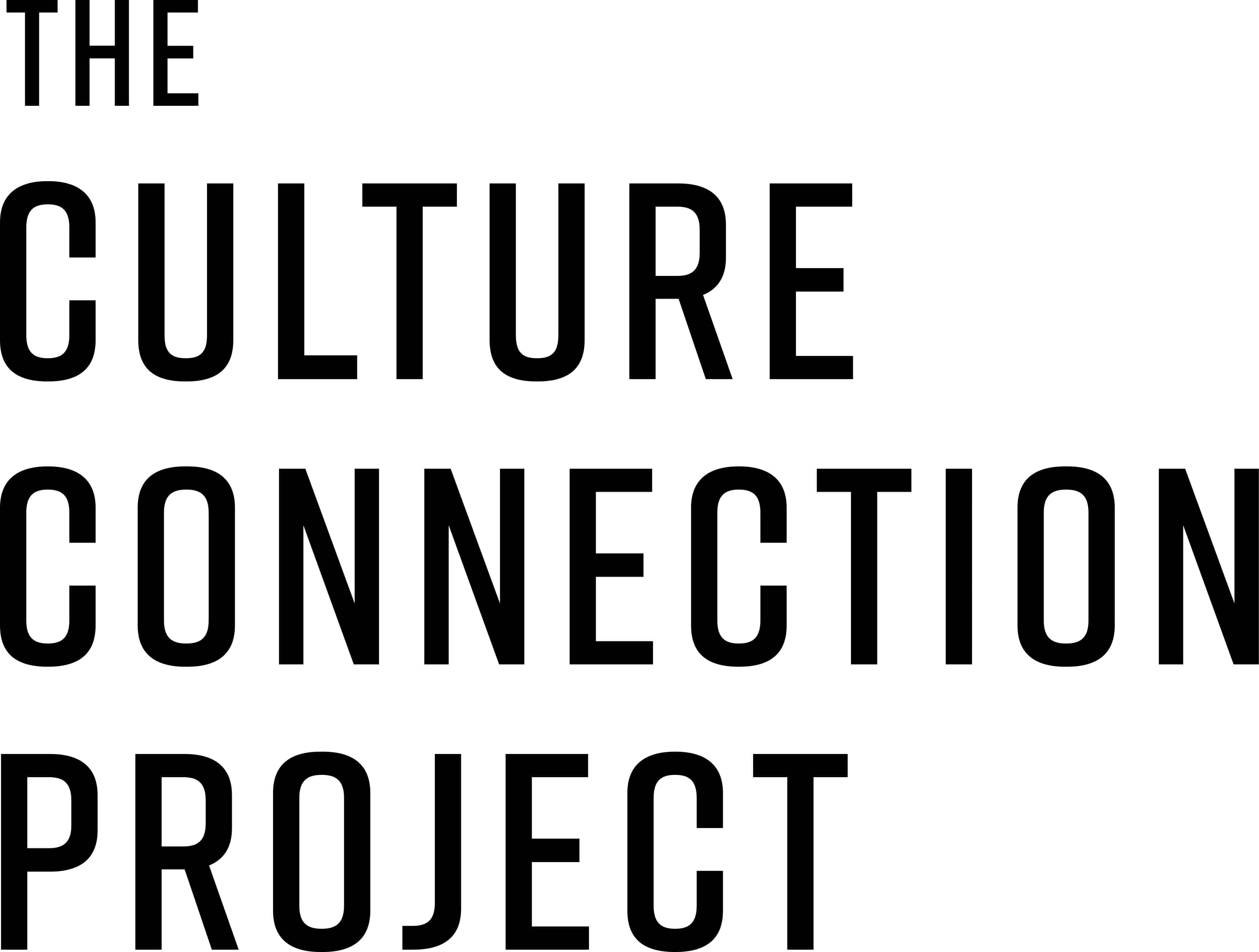 culture connection project